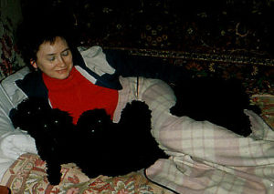 Welpen von unserem Wurf in Jalta, Krim. Meine Mama liegt mit den Pudelwelpen zusammen im Bett. :-)